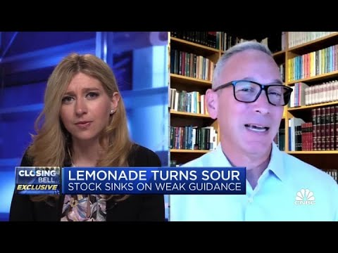 Lemonade Diligence Post – DON'T Buy the Dip